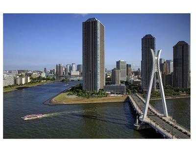 日本画像(隅田河口).jpg